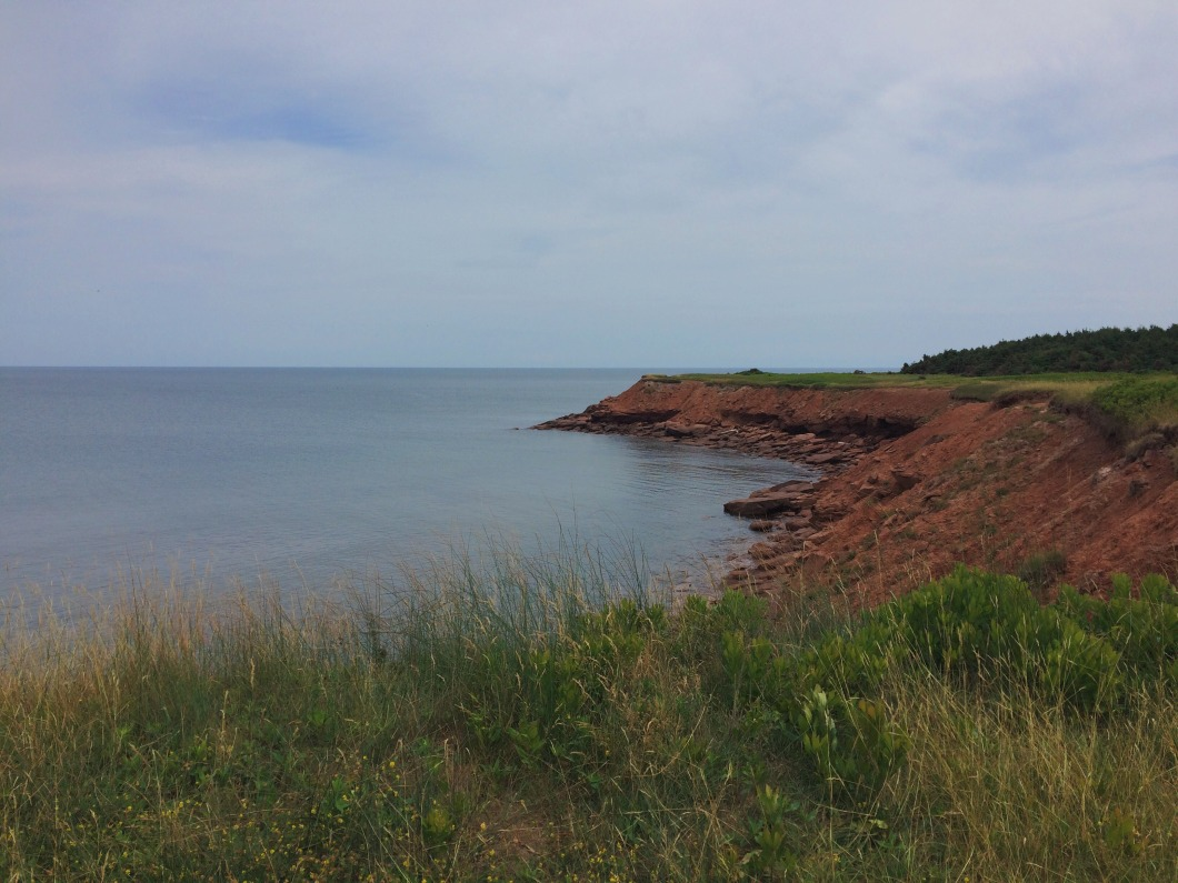 Darnley Red Cliffs.jpg