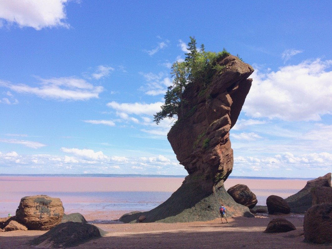 Hopewell rock.jpg